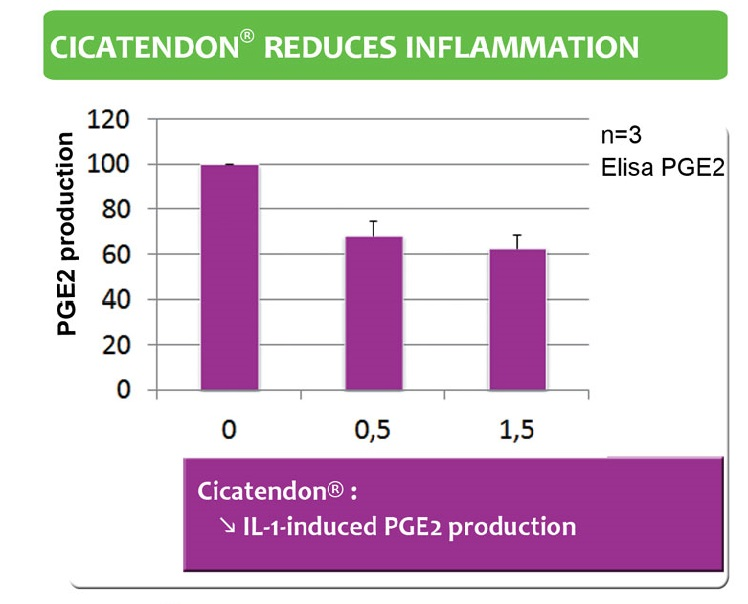 Cica reduces inflammation