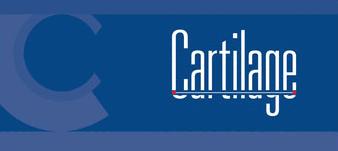 Cartilage bandeau